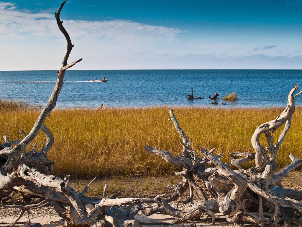 Horseshoe Beach Fl >> Horseshoe Beach Florida United States Fishory